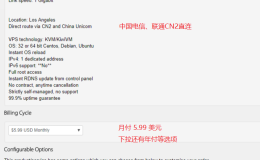 新用户购买搬瓦工VPS (Bandwagonhost) 图文攻略 详细
